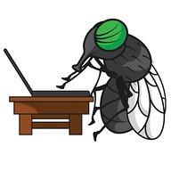 gadfly361 avatar